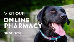 full service veterinarians pets alive